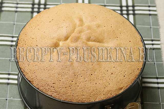 как испечь бисквит для торта