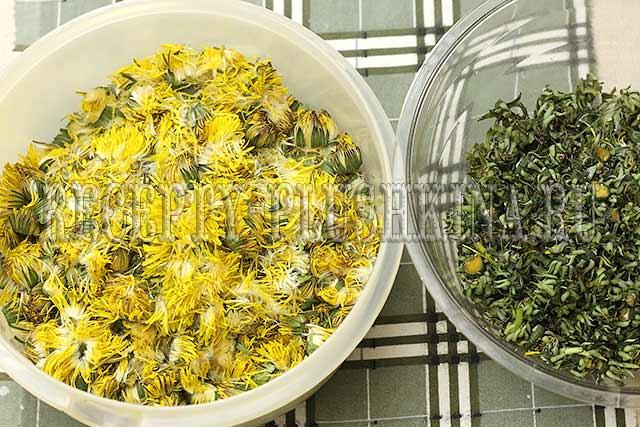 цветки одуванчика для варенья