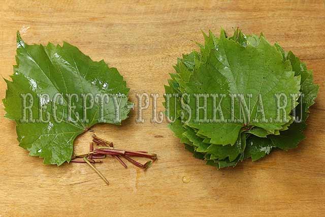 долма из свежих виноградных листьев