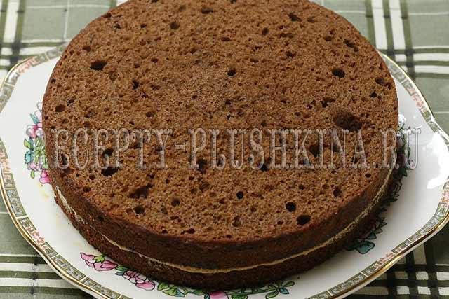 шоколадный торт с какао рецепт с фото