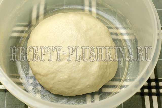 постное дрожжевое тесто для яблочного пирога